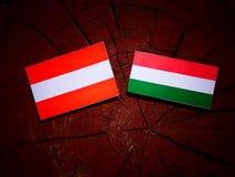 Austrian flag with Hungarian flag on a tree stump isolated Stock Photos