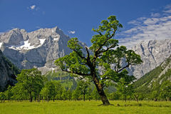 Austrian landscape Royalty Free Stock Photography