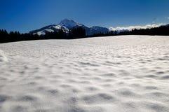 Austrian landscape Royalty Free Stock Photo
