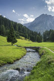 Austrian landscape with alps on background Royalty Free Stock Photo