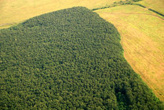 Austrian forest seen from a plane Stock Images