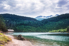 Austrian landscape - small lake in the Alps Stock Images