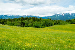Austrian landscape Royalty Free Stock Photos