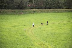 Austrian people use leash bring dogs walk and playing on grass field. At Reutte city in Tyrol state, Austria Royalty Free Stock Images
