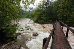 Austrian river Royalty Free Stock Photos
