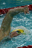 Austrian swimmer Sebastian STEFFAN AUT. Hong Kong, China - Oct 29, 2016. Austrian swimmer Sebastian STEFFAN AUT swiming freestyle. FINA Swimming World Cup Stock Photo