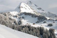 Austrian Winter Scene Royalty Free Stock Photos