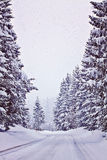 Austrian winter with snowfall on Alpine road Stock Image