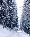 Austrian winter with snowfall on mountain road Royalty Free Stock Photos