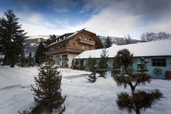 Austrian wooden house in pine forest at snowy day Stock Photography