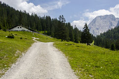 Austrians alps with blue sky beautiful landscape and house on the way Stock Photos