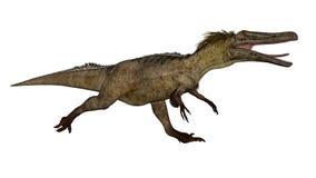 Austroraptor dinosaur -3D render. Austroraptor dinosaur running isolated in white background -3D render stock illustration