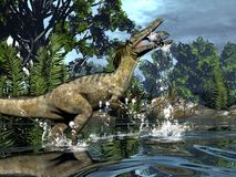 Austroraptor dinosaur fishing -3D render. Austroraptor dinosaur fishing in a river next to gingko trees -3D render stock illustration