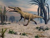 Austroraptor dinosaur walking -3D render. Austroraptor dinosaur walking in the desert by sunset -3D render stock illustration