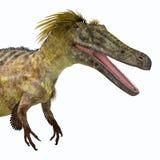 Austroraptor dinosauriehuvud vektor illustrationer