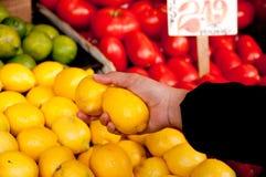 Auswählen der Frucht am Markt Stockfotografie