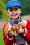 Auswählende Pilze, Jahreszeit für Pilze. stockfotografie