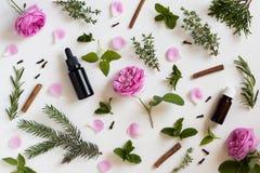 Auswahl von ätherischen Ölen und von Kräutern auf einem weißen Hintergrund Lizenzfreies Stockfoto