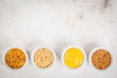 Auswahl von 4 Arten Senf Stockbilder