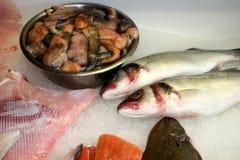Auswahl von Fischen lizenzfreie stockfotos