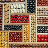 Auswahl von trockenen Bohnen in den verschiedenen Farben Lizenzfreie Stockbilder