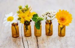 Auszüge von Kräutern in den kleinen Flaschen Selektiver Fokus stockfotografie
