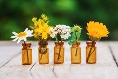 Auszüge von Kräutern in den kleinen Flaschen Selektiver Fokus stockbild