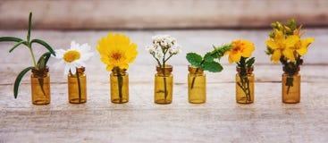 Auszüge von Kräutern in den kleinen Flaschen Selektiver Fokus stockfotos
