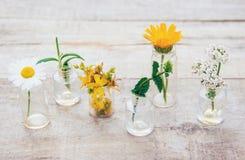 Auszüge von Kräutern in den kleinen Flaschen Selektiver Fokus stockbilder