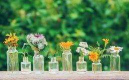 Auszüge von Kräutern in den kleinen Flaschen Selektiver Fokus lizenzfreie stockbilder