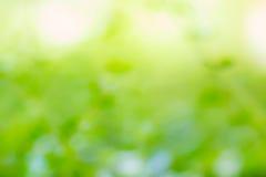 Auszug unscharfer grüner Hintergrund Lizenzfreies Stockbild