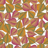 Aut leaves collect-04. Vector hand drawn seamless pattern with colorful autumn leaves Royalty Free Stock Photos