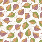 Aut leaves collect-02. Vector hand drawn seamless pattern with colorful autumn leaves Royalty Free Stock Photos