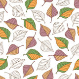 Aut leaves collect-01. Vector hand drawn seamless pattern with colorful autumn leaves Stock Photography