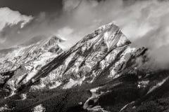 Autane minuta e grande nell'inverno, Champsaur, bianco e nero delle alpi, Francia Fotografia Stock