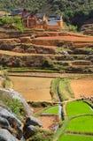 Autarkes Dorf in Ost-Madagaskar, Afrika Stockfotografie