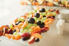 Autentisk buffé, blandade nya frukter, bär och citrus Förberedelse för idérik meny för design Royaltyfri Foto