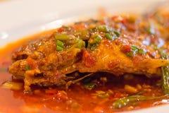 Autentisk kryddig kinesisk mat, closeup arkivfoton