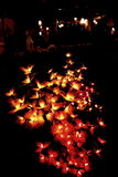 Autentyczny kwiatu światło dla dekoruje Zdjęcia Royalty Free