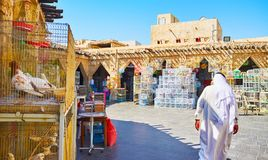 Choose the pet birds, Souq Waqif, Doha, Qatar. Authentic Birds Market of Souq Waqif is the perfect place to choose the pet birds, enjoy the medieval architecture Royalty Free Stock Photography