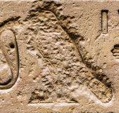 Authentic Egyptian hieroglyphs. Stock Photography