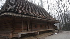 Authentic european wooden houses with thatched, straw roof, located in the forest. Close up stock video footage