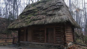Authentic european wooden houses with thatched, straw roof, located in the forest. Wooden house in the wet autumn forest stock video footage