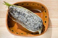 Authentic huitlacoche Stock Image