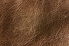 Authentic rough leather texture background Stock Images