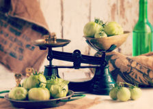Authentic spanish green tomatoes Royalty Free Stock Image