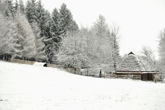 Authentic ukrainian village with wooden huts and fences in winter. Royalty Free Stock Photography