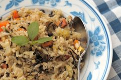 Authentic vegetarian fried rice Royalty Free Stock Image