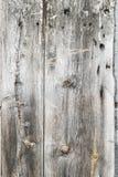 Authentieke, oude raad van de muur van een visserijplattelandshuisje Royalty-vrije Stock Foto's