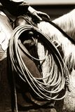 Authentische Cowboy-Funktion (Sepia) Stockbilder